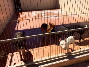 P07 Alicante06