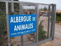 P07 Alicante09