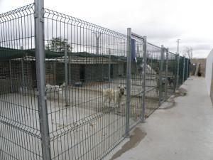 P33 Burgos37