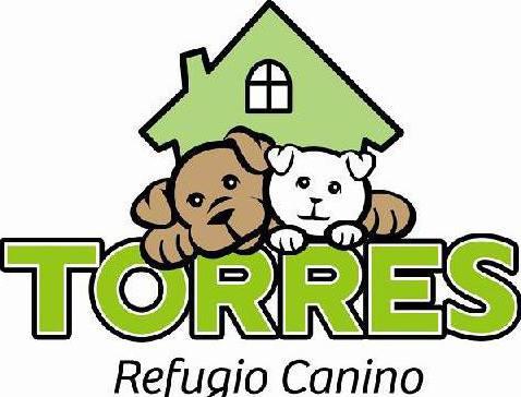 P81 Torres01