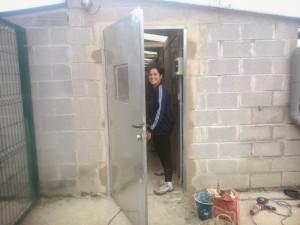 P81 Torres37